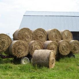 farm-09