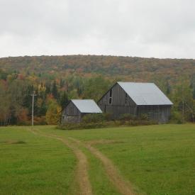 farm-12