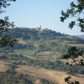 Taste-of-Tuscany-Italy-2011-067