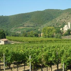 Taste-of-Tuscany-Italy-2011-079