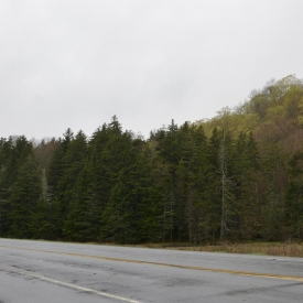 17-Vermont-Spring-Training-054