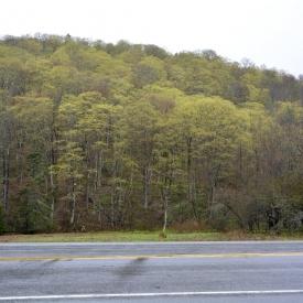 17-Vermont-Spring-Training-051
